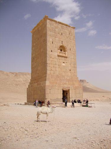 Palmyra19