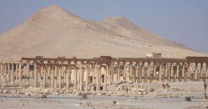 Palmyra4