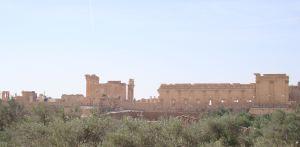 Palmyra6