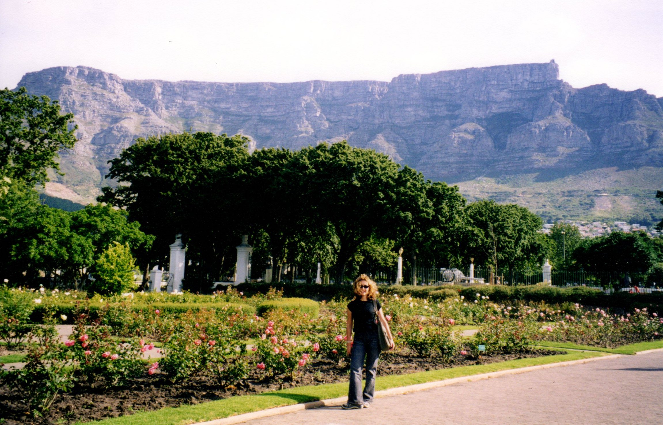 Company's Gardens, Cape Town